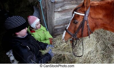 Two kids boy and girl feed horse near wooden building