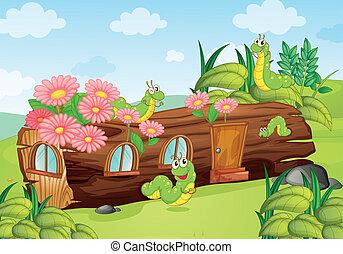 gusanos, de madera, casa