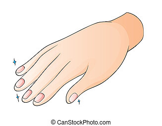 hand - illustration of a hand on a white background