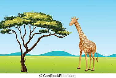 Giraffe by a tree - Illustration of African scene with...