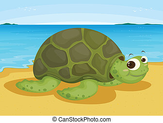 tortoise on sea shore - illustration of a tortoise on sea...