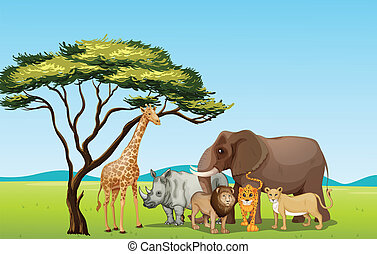 African animals - Illustration of African animals in...