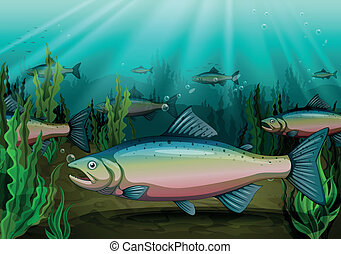 fish - illustration of a fish under sea water