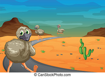 Emu in desert - illustration of three emu passing on road