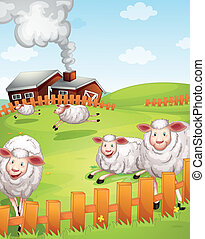 sheeps in the farm - illustration of sheeps in the farm near...