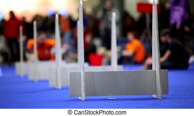 Crowd watch dog of corgi pembroke breed run and jump over barriers on agility competition