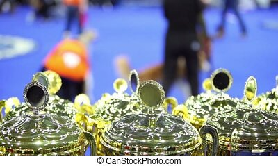 Few prize cups at unfocused background with people and their...
