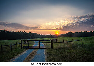 country road sunrise over farm land