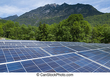Photovoltaic System surrounded by trees and mountains