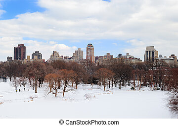 New York City Manhattan Central Park in winter with snow and...