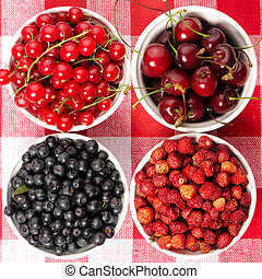 Wild berries in bowls - blueberry, redcurrant, cherry,...