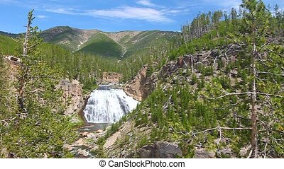 Gibbon Falls in Yellowstone - Gibbon Falls flows through the...