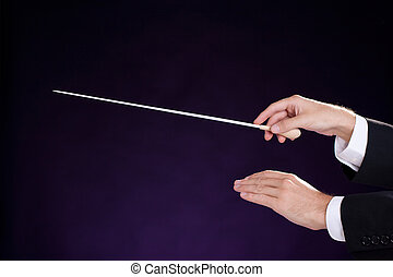 Conductor - Male orchestra conductor hands, right with baton...