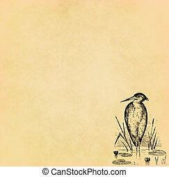 Illustration of bird on old paper with copy space