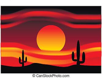 Desert sunset with cactus plants