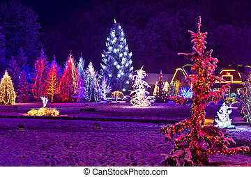 Christmas fantasy - park and forest in xmas lights -...