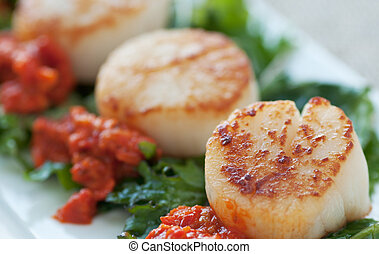 Seared Scallop Appetizer - Fresh seafood dish on sauteed...