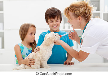 Kids with their pet at the veterinary doctor - fluffy dog...