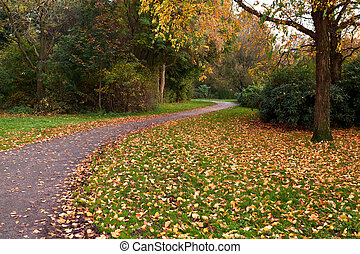 narrow path in autumn park - narrow path in colorful autumn...