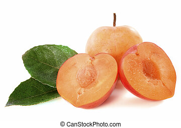 yellow plums in front of white background