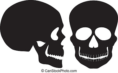 Skulls Black and White Front and Side View - Skulls Front...