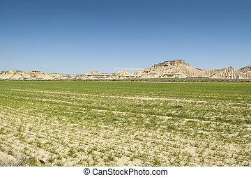 Semi-desert landscape in Bardenas Reales, Navarre, Spain....