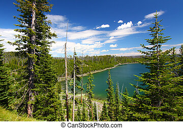 Duck Lake Yellowstone National Park - Beautiful blue waters...