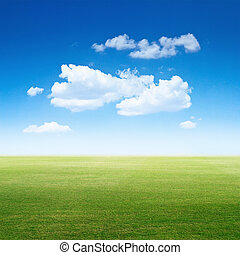 清楚, 草, 天空