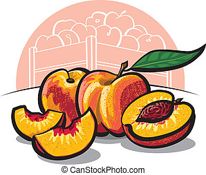 fresh peach fruits