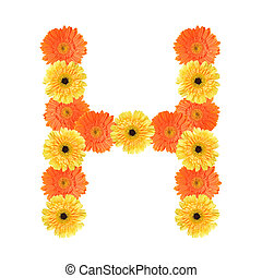 Alphabet H created by flower - Yellow and orange...