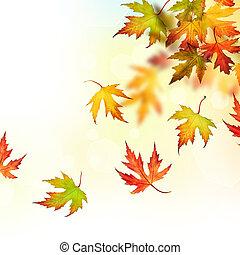 Queda, Outono, folhas
