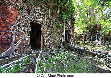 Ruin of abandoned building covered with roots on Ross Island...