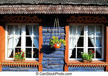 House - Blue house