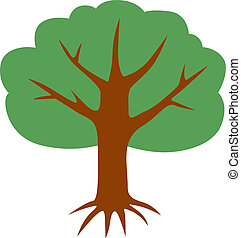 Green tree  - A big tree with a spreading crown and roots