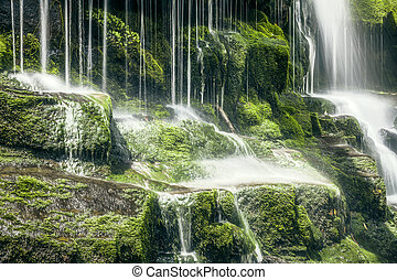 Tasmanian Waterfall - An image of a beautiful Tasmanian...