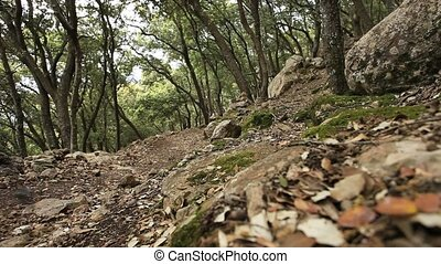 Mallorca 4_2 - Hiking the GR221. Mallorcas Tramuntana Hike