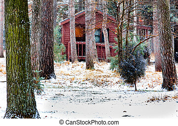 Log Cabin the Winter Snow