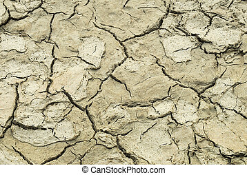 Dried Earth - Closeup of cracked and hard ground during...