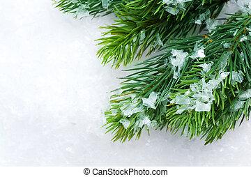 sur, arbre, noël, fond, neige, hiver