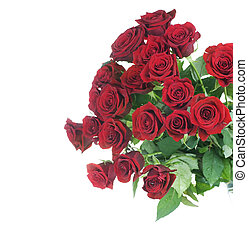 Red Roses bunch border over white