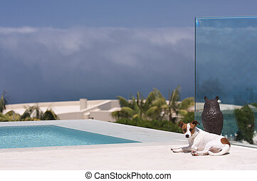 Storm Watch from Poolside - JRT on Storm Watch from Poolside...