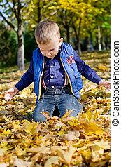 jesień, Chłopiec, Mały, liście, klęczący