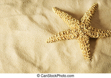Starfish on the Sand. Vacation concept