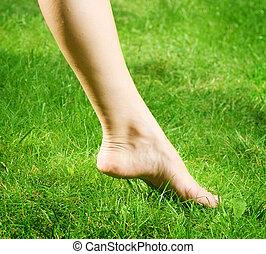 Woman's bare feet in green grass