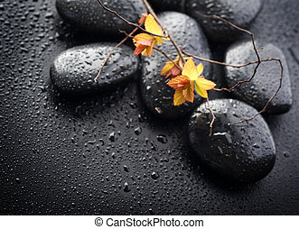 Wet Zen Spa Stones