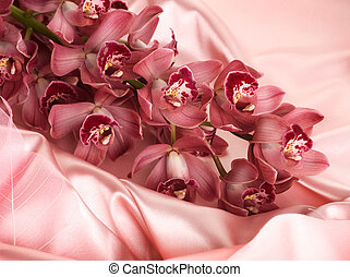 Silk And Orchids