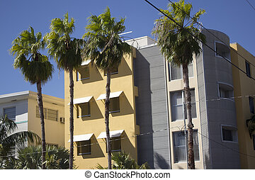 Building in Miami Florida - Condo or business building in...