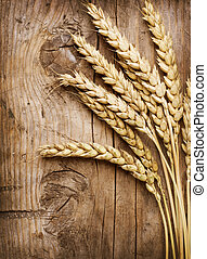 Wheat Ears on the Wood . Food Background