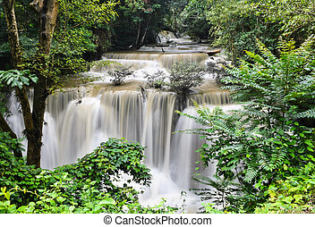 Tropical rainforest waterfall