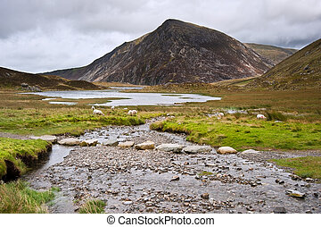 View over Llynn Idwal in Glyderau mountain range in...